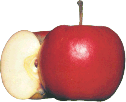 http://www.friskoteket.se/images/split-apple-big.png